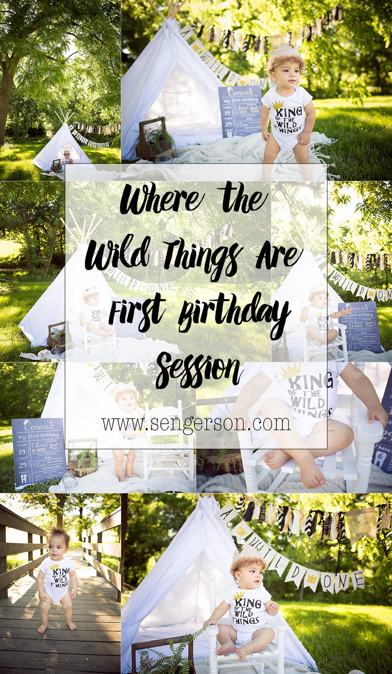 where the wild things are first birthday cake smash ideas!