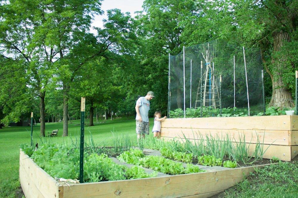 Early Spring Vegetable Garden Tips with a Cold Frame and Raised Bed
