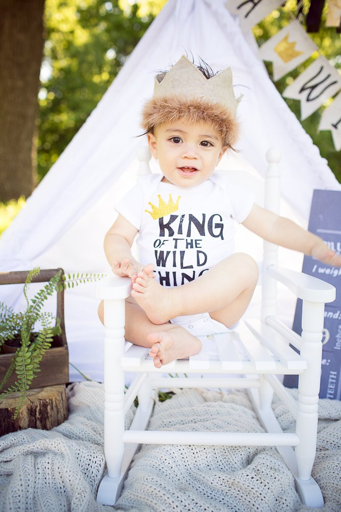 wild things cake smash first birthday party ideas
