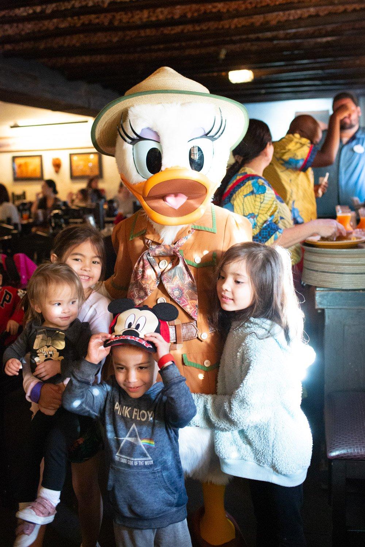 Disney restaurant review at Tusker House Daisy Photo