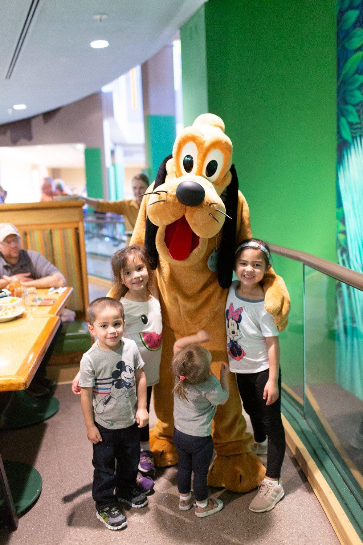 Disney restaurant review at Garden Grill Pluto photo