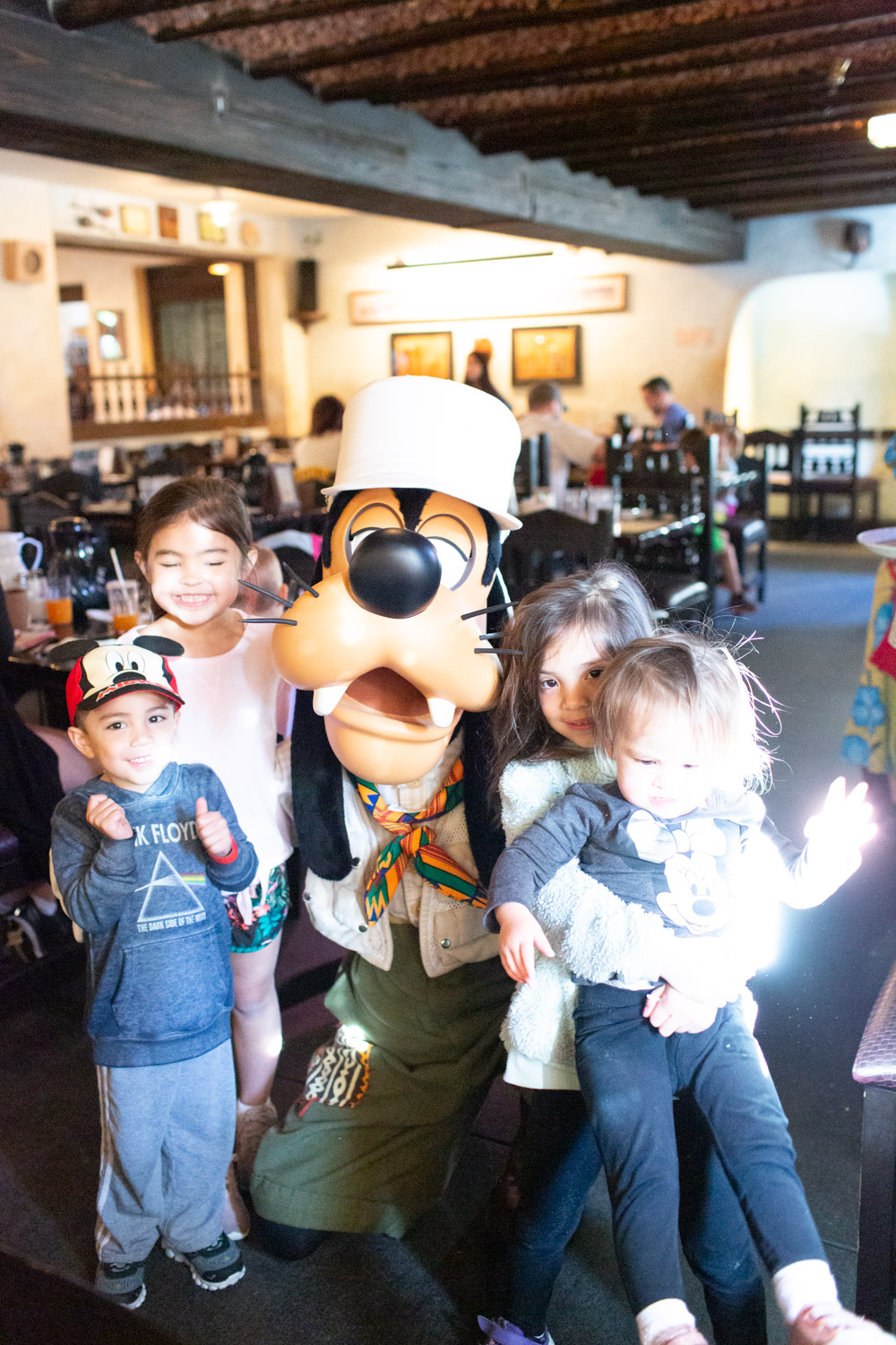 Disney restaurant review at Tusker House Goofy Photo
