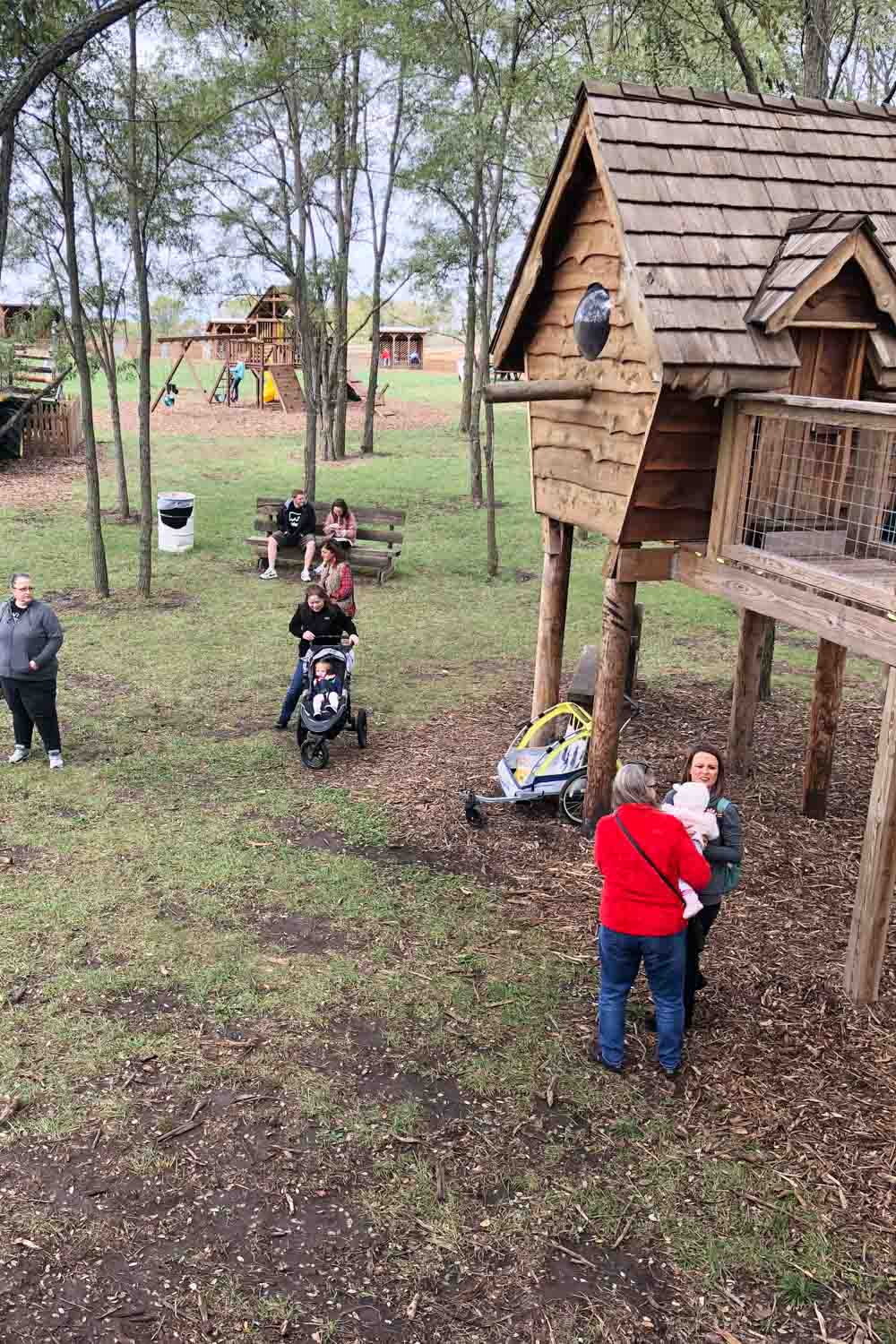 kansas city pumpkin patch - carolyns country cousin treehouse