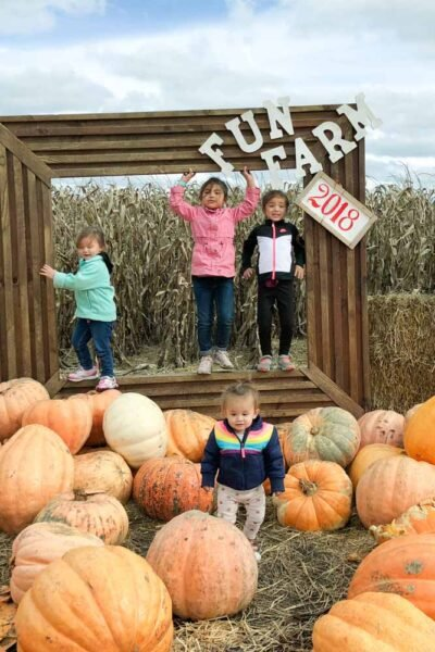 kansas city pumpkin patch - carolyns country cousin photo op