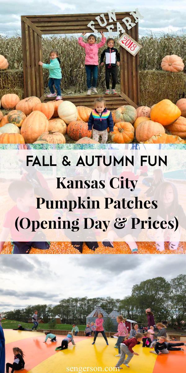 kansas city pumpkin patch review