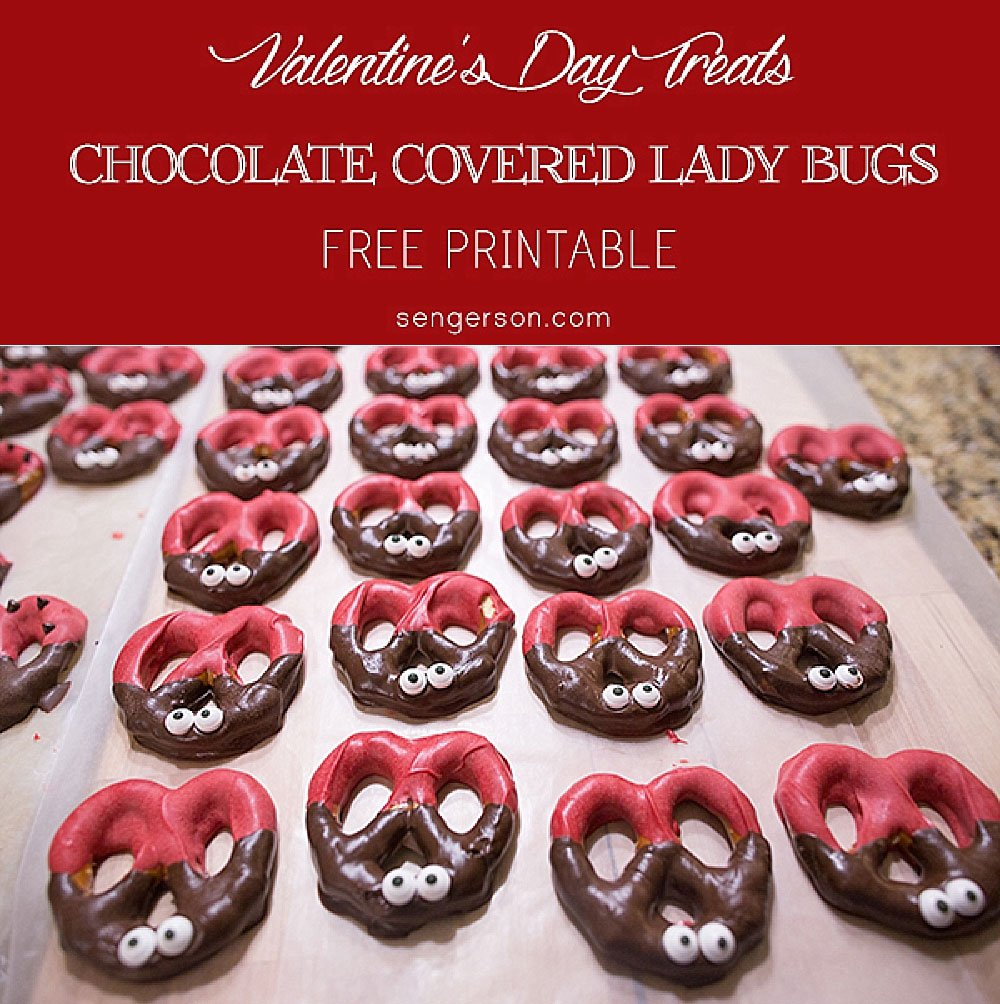 chocolate-covered-ladybugs