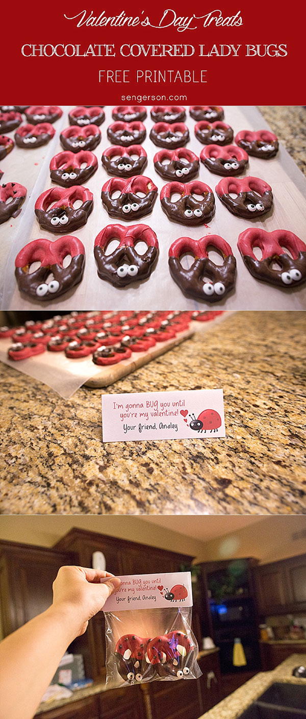 valentines day chocolate covered pretzel lady bugs