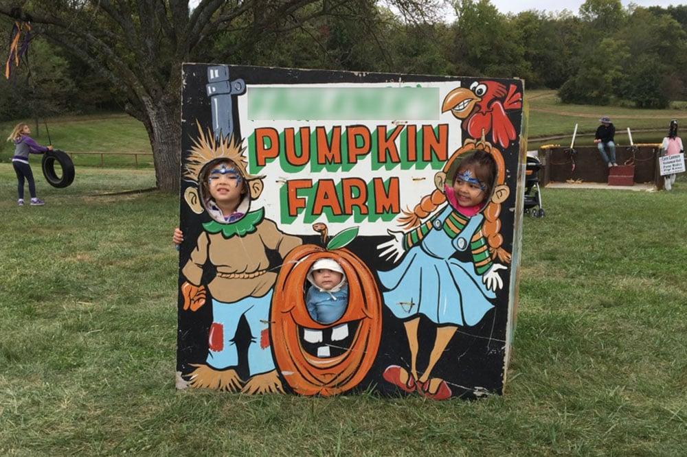 faulkners pumpkin ranch