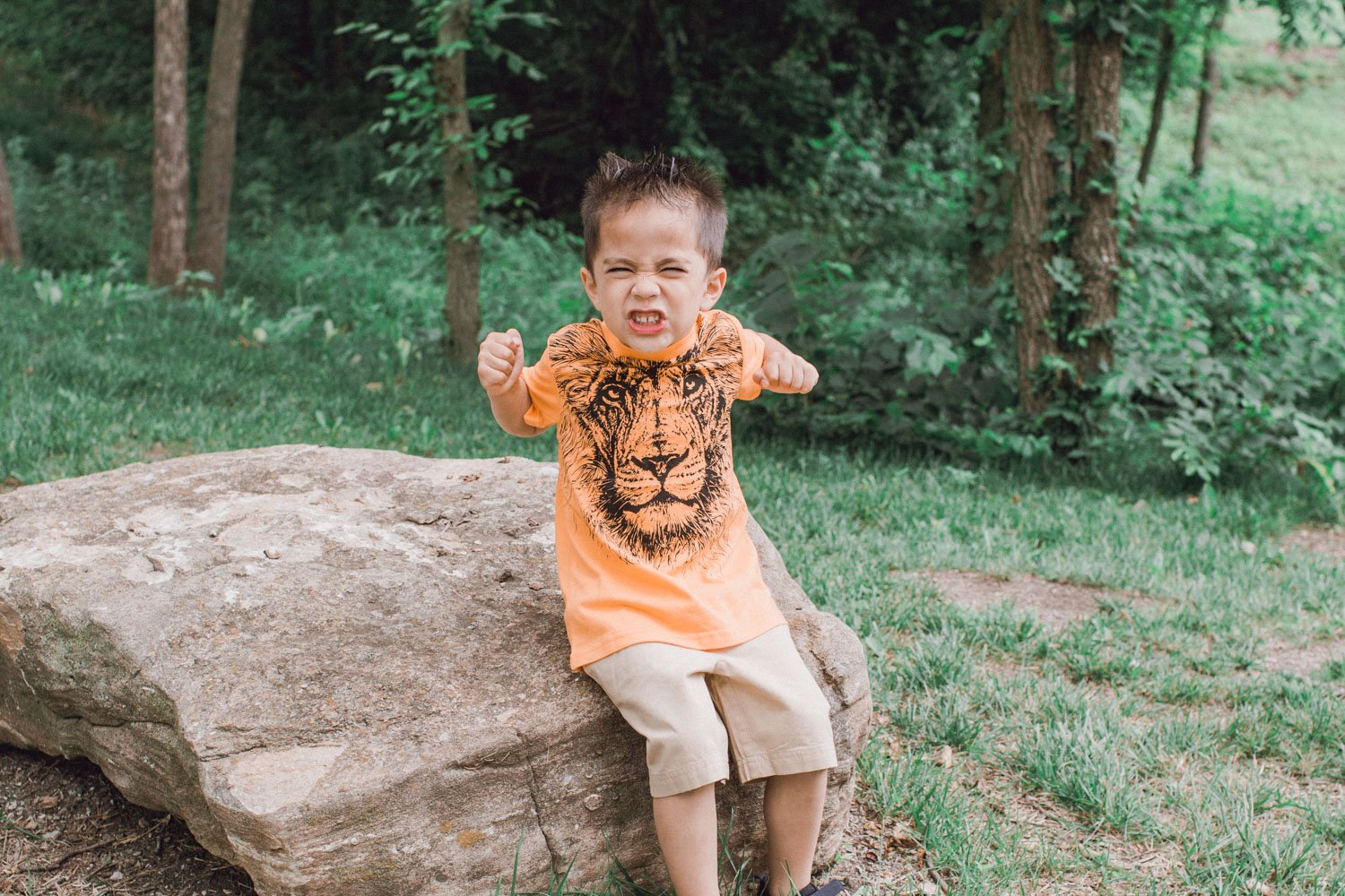 Zoo t-shirt for kids - Lion graphic tee with khaki shorts inspire a safari themed outfit for kids!