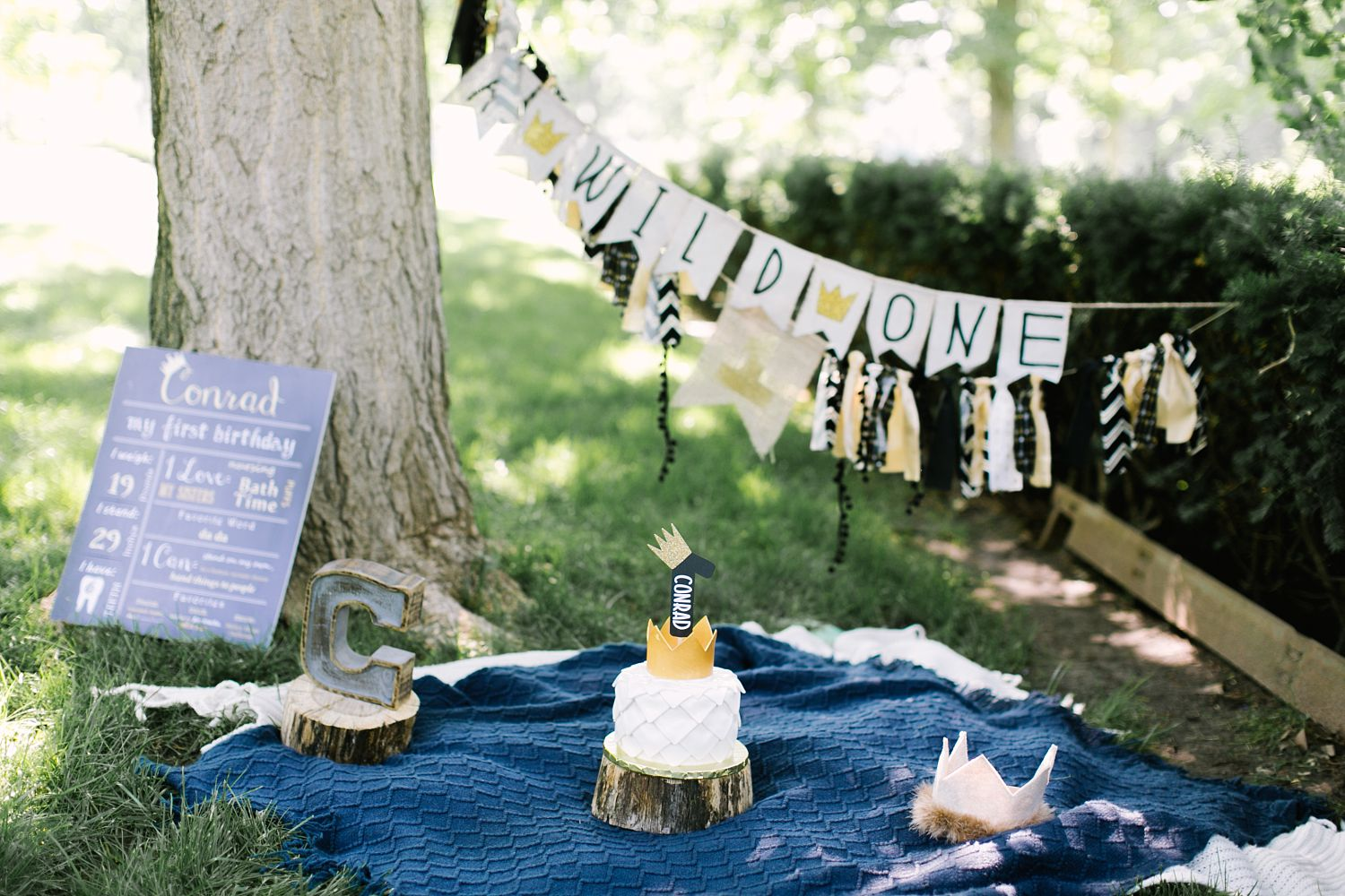 Where the Wild Things Are first birthday idea