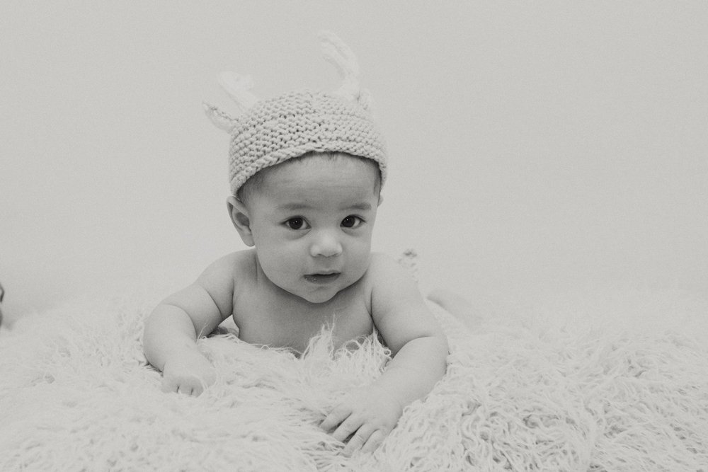 baby-antlers-bw