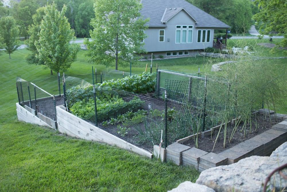 tiered garden