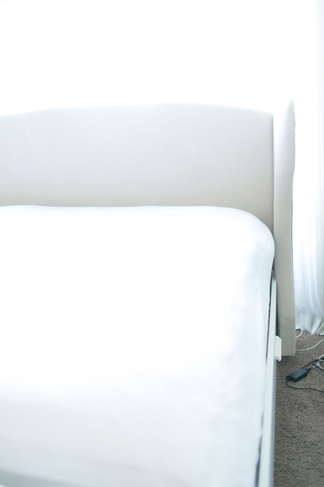 warm comfy bed