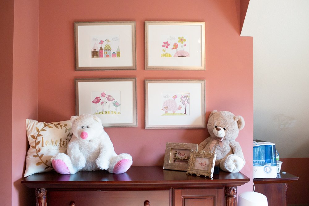 elegant and timeless pink paint color for girls bedroom