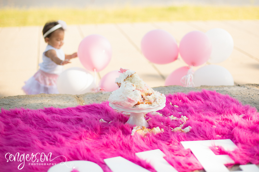 Cake Smash // Riverfront Park - Kansas City Photographer - Sengerson Photography