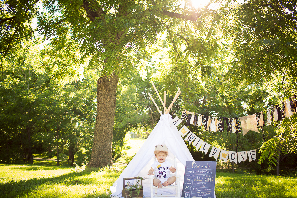 Where the Wild Things Are Baby First Birthday