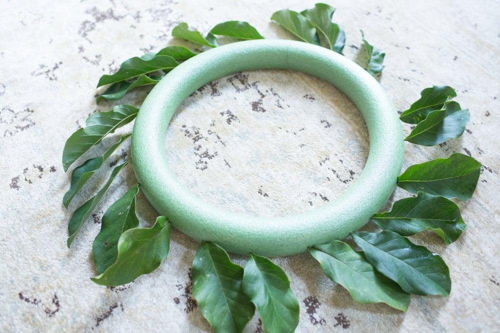 Adding magnolia leaves that are real for magnolia wreath DIY