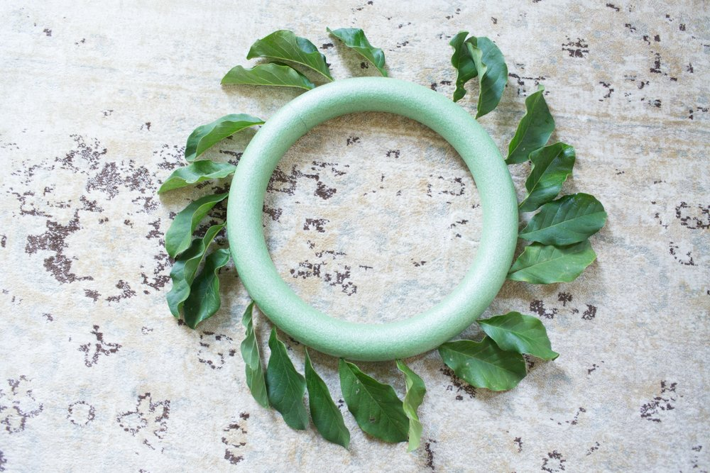 for magnolia wreath DIY