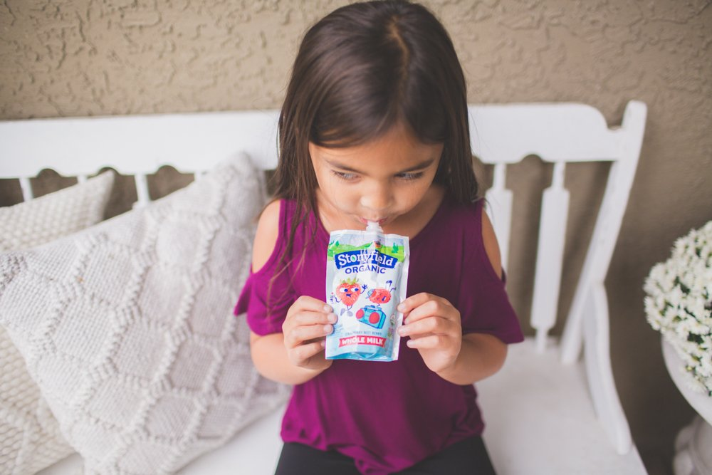 stonyfield organic yogurt with bento cold lunch for kids 1