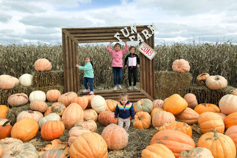 kansas city pumpkin patch - carolyns country cousin photo op