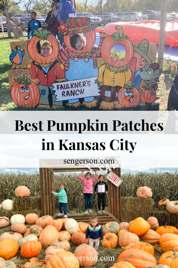 kansas city pumpkin patch review