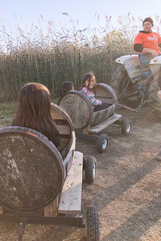 faulkner's pumpkin ranch - barrel ride