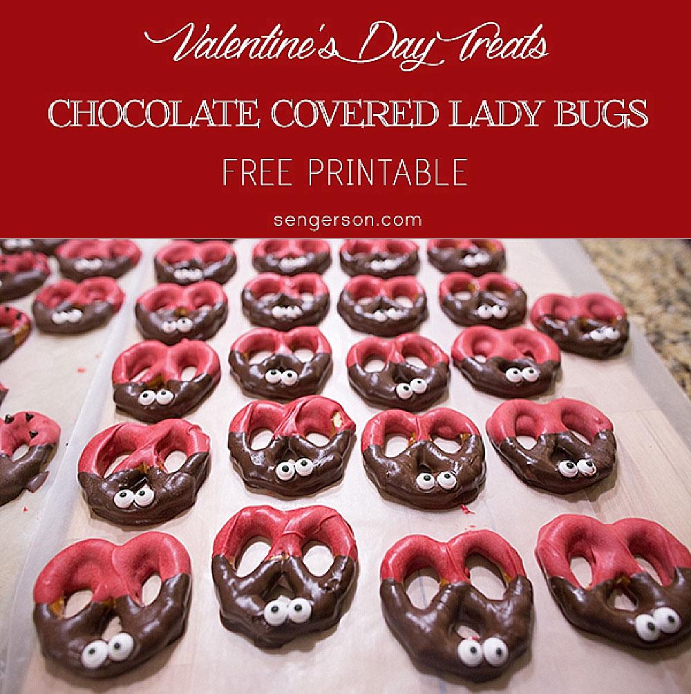 chocolate-covered-ladybugs