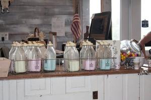 Shatto Milk Tour
