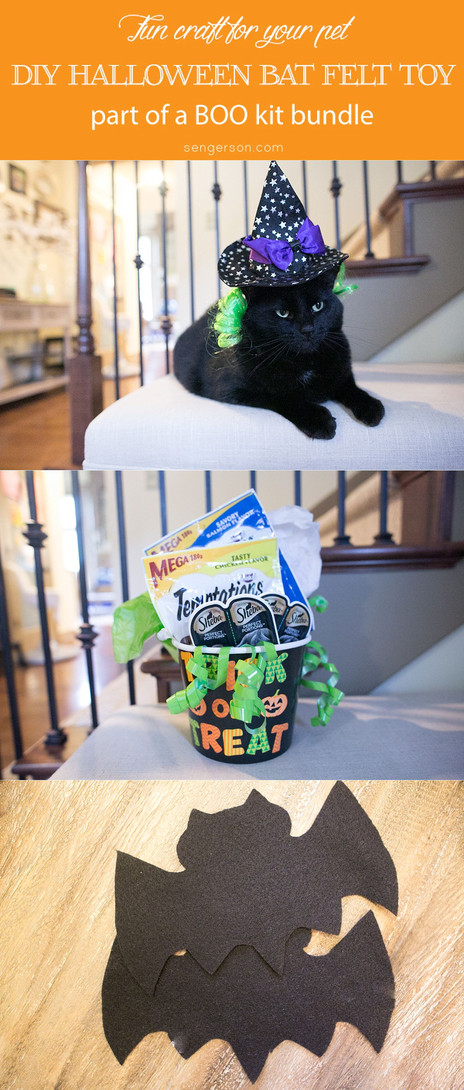 halloween toys for cats - craft project