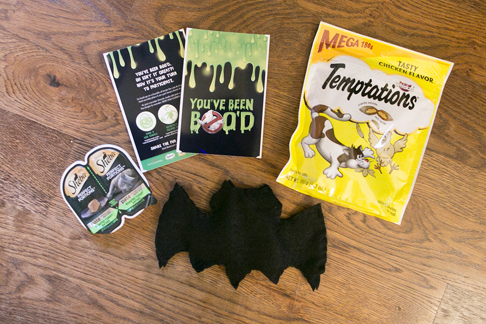 Best Sources for Halloween Toys for Cats (and a list of awesome toys!)
